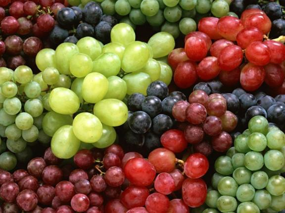 Anggur menurut Alquran