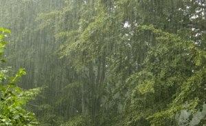 Manfaat Adanya Hujan